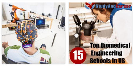 Biomedical Engineering Degree Schools