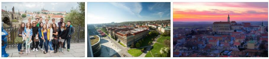 Cultural Peculiarities in the Czech Republic