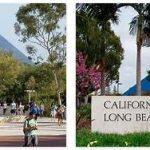 Study in California State University Long Beach (2)