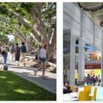 Study in California State University Long Beach (5)