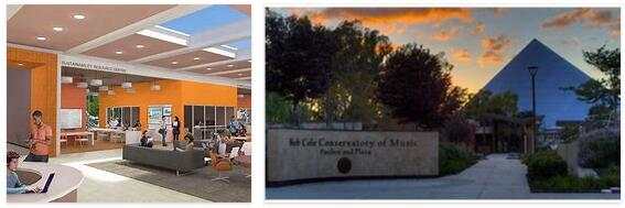 Study in California State University Long Beach 6