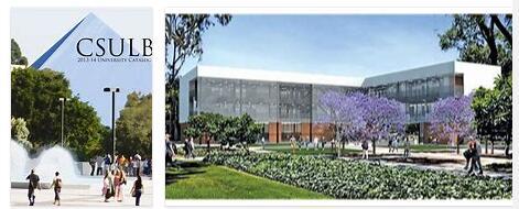 Study in California State University Long Beach 7