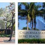 Study in California State University Long Beach (9)